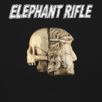 elephant-rifle